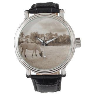caballo blanco en pasto que pasta sepia relojes de pulsera