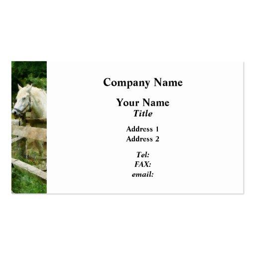Caballo blanco en prado tarjetas de visita