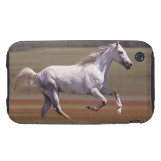 Caballo blanco que corre en campo funda resistente para iPhone 3