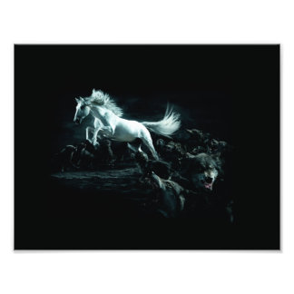 Caballo blanco y el ataque de lobos salvajes fotografías