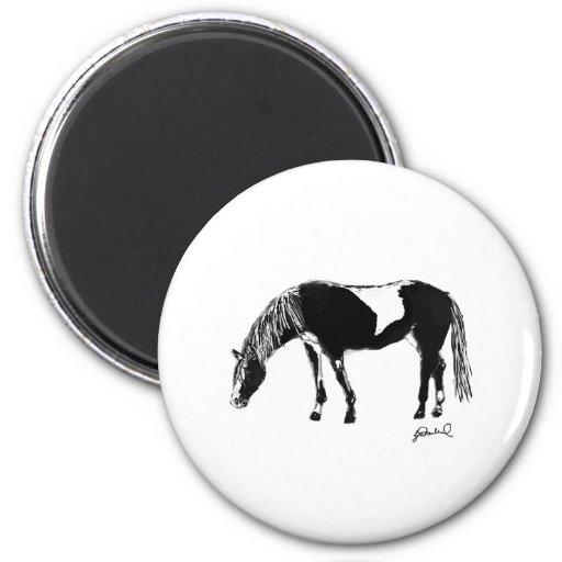 Caballo blanco y negro del pinto imán redondo 5 cm