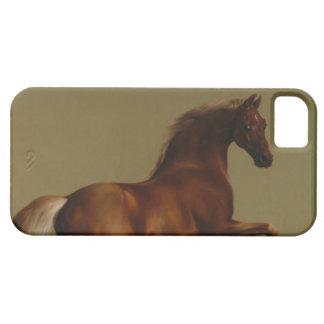 Caballo, caballo, caballo por Stubbs para el teléf iPhone 5 Coberturas