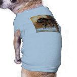 Caballo Camisas De Perritos