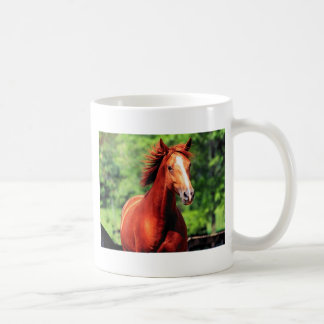 caballo con una capa roja taza básica blanca