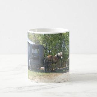 Caballo de Amish Taza