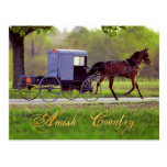 Caballo de Amish y con errores, Lancaster, PA