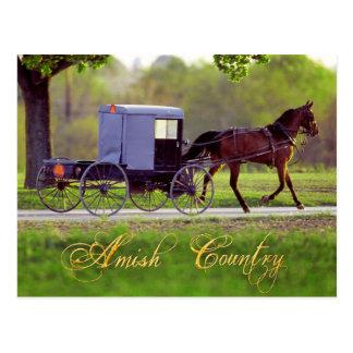 Caballo de Amish y con errores, Lancaster, PA Postal