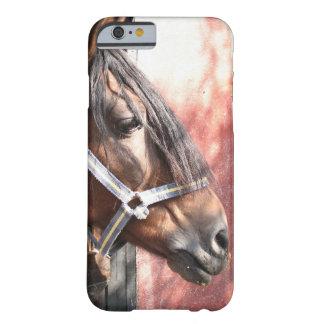 Caballo de bahía bonito en un establo Sunlit Funda Barely There iPhone 6