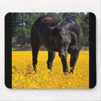 Caballo de bahía en un campo de flores amarillas mouse pads