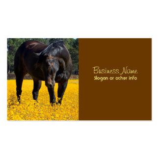 Caballo de bahía en un campo de flores amarillas tarjetas de visita
