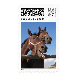 Caballo de bahía que pega hacia fuera la lengua timbres postales