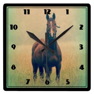 Caballo de bahía que se coloca en un campo reloj cuadrado