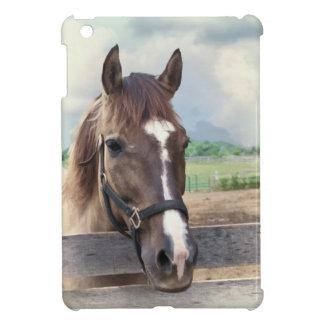Caballo de Brown con caso del iPad listo de la caj