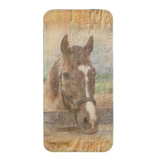 Caballo de Brown con el halter en la madera vieja Funda Para iPhone 5