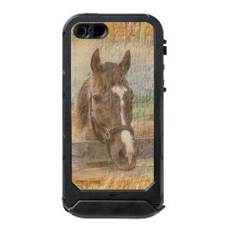 Caballo de Brown con el halter en la madera vieja Funda Para iPhone 5 Incipio ATLAS ID