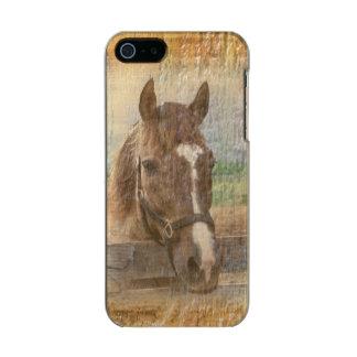 Caballo de Brown con el halter en la madera vieja Funda Para iPhone 5 Incipio Feather Shine