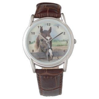 Caballo de Brown con el halter Reloj De Mano