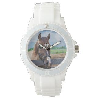 Caballo de Brown con el halter Reloj