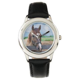 Caballo de Brown con el halter Relojes De Mano