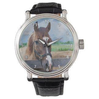 Caballo de Brown con el halter Relojes De Pulsera