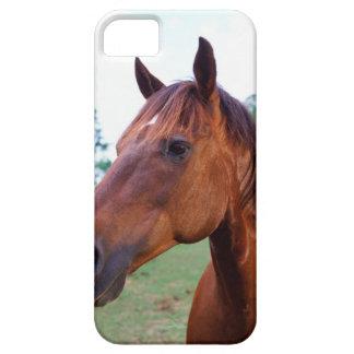 Caballo de Brown, primer iPhone 5 Case-Mate Coberturas