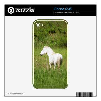 Caballo de Camargue en el Alpes Cote d'Azur del Skins Para eliPhone 4