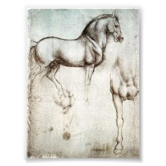 Caballo de da Vinci Fotografía