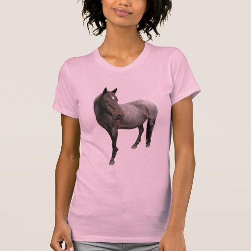 Caballo de Exmoor T Shirts