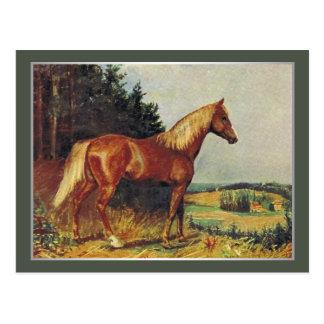 Caballo de la castaña tarjeta postal