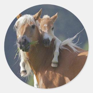 Caballo de la madre y del bebé pegatina redonda