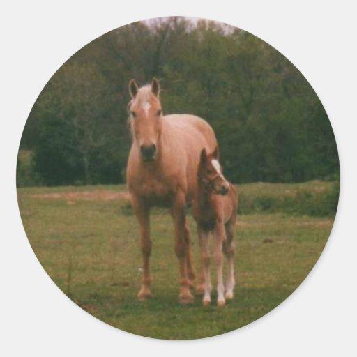 Caballo de la mamá y caballo del bebé pegatina redonda