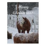 ¡Caballo de la nieve, Felices Navidad! Postales