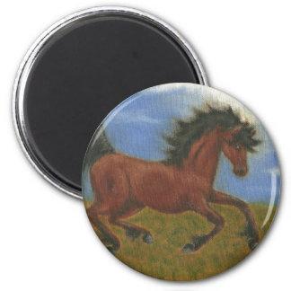 caballo de las bragas del aceite imán redondo 5 cm