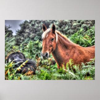 Caballo De lino-crinado del bosque del Palomino nu Impresiones