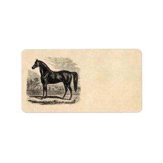 Caballo de los 1800s del vintage - plantilla del E Etiqueta De Dirección