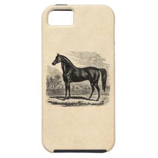 Caballo de los 1800s del vintage - plantilla del E iPhone 5 Case-Mate Carcasas
