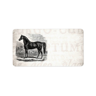 Caballo de los 1800s del vintage - plantilla del etiqueta de dirección