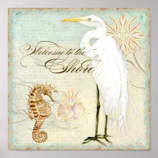 Caballo de mar, playa costera del gran Egret - bel Impresiones