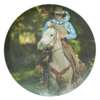 Caballo de montar a caballo a través del agua platos