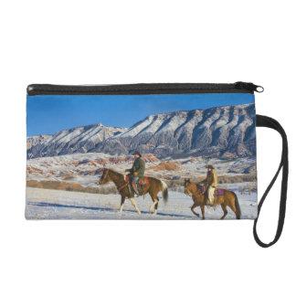 Caballo de montar a caballo del vaquero y de la va