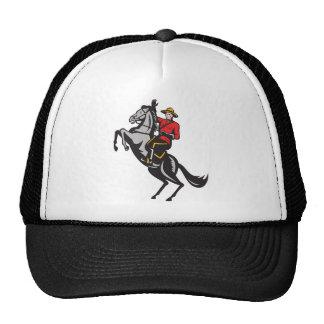 Caballo de montar a caballo montado canadiense del gorra