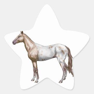 Caballo de Nez Perce Pegatina En Forma De Estrella