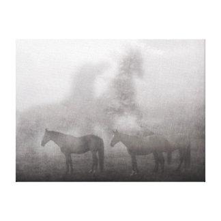 Caballo de niebla de la mañana impresión en lienzo estirada