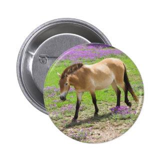 Caballo de Przewalski Pin Redondo De 2 Pulgadas