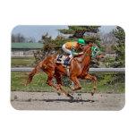 Caballo de raza #2 iman de vinilo