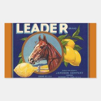 Caballo de raza de la ventaja de los limones de la rectangular pegatina