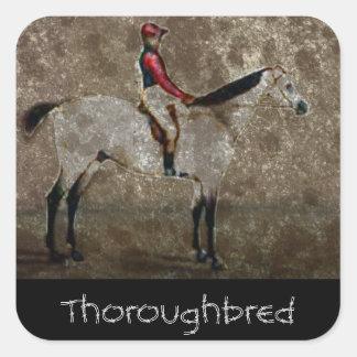 Caballo de raza excelente del vintage pegatina cuadrada
