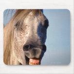 caballo de risa alfombrilla de ratones