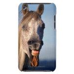caballo de risa funda iPod