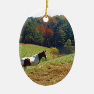 Caballo del blanco y de Brown, charca del otoño Adorno Navideño Ovalado De Cerámica